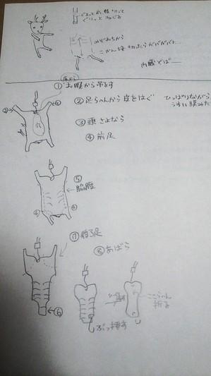 DSC_2302.JPG
